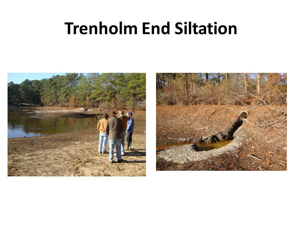Trenholm End Siltation