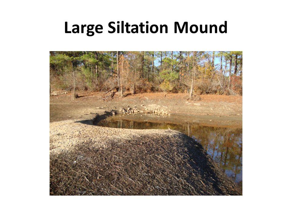 Large Siltation Mound