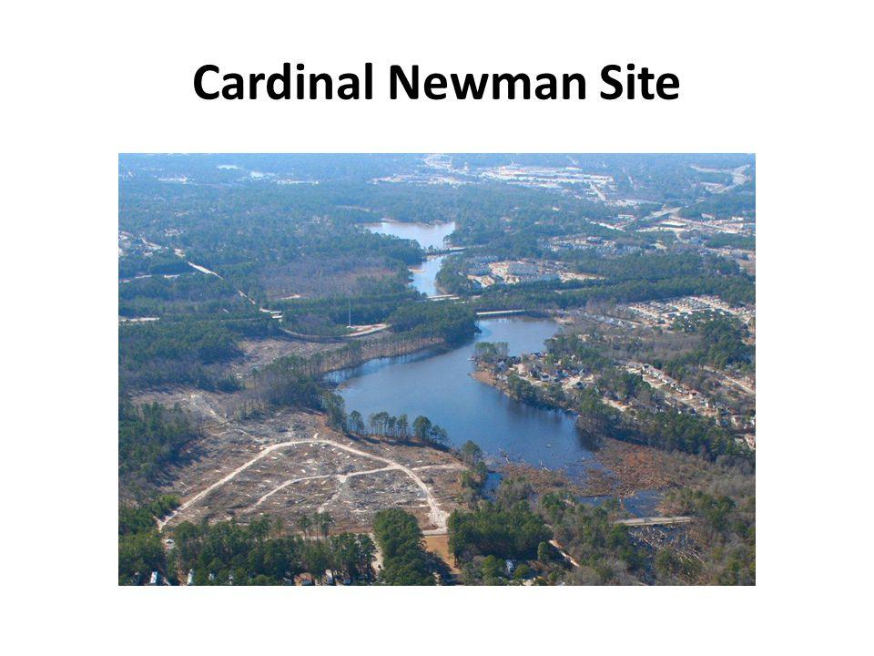 Cardinal Newman Site