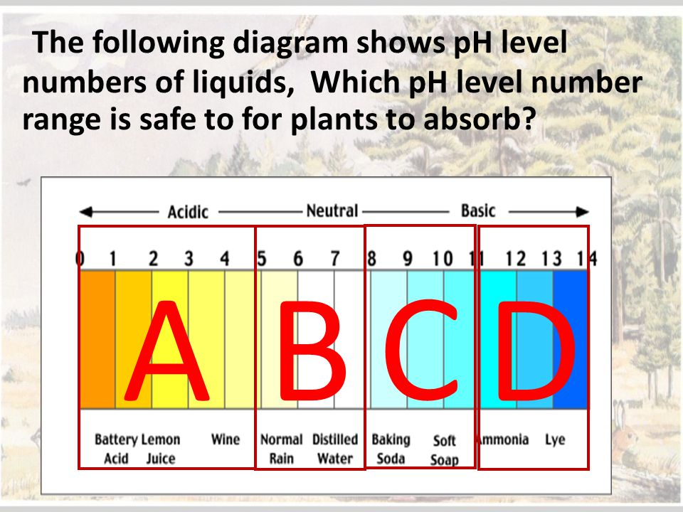 The following diagram shows pH level numbers of liquids, Which pH level number range is safe to for plants to absorb