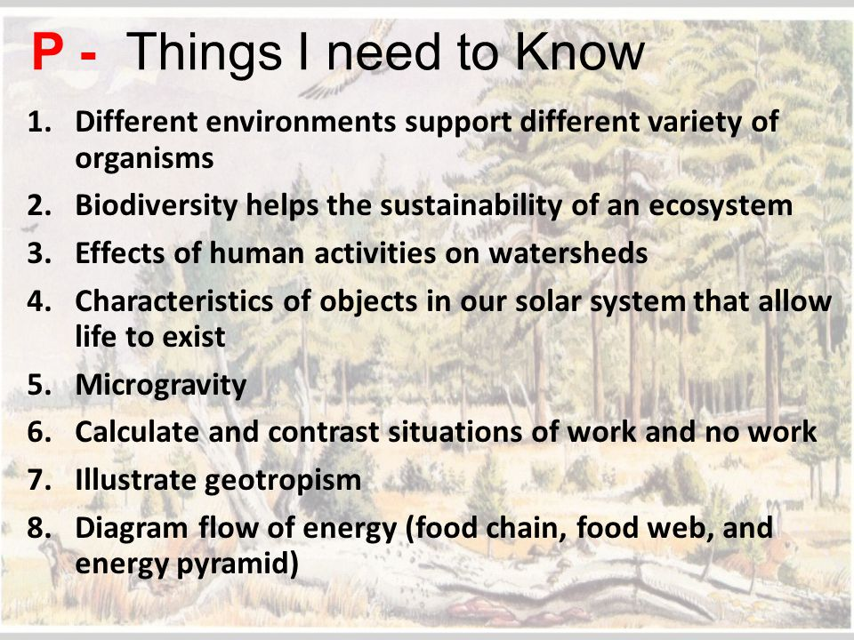 P - Things I need to Know Different environments support different variety of organisms. Biodiversity helps the sustainability of an ecosystem.
