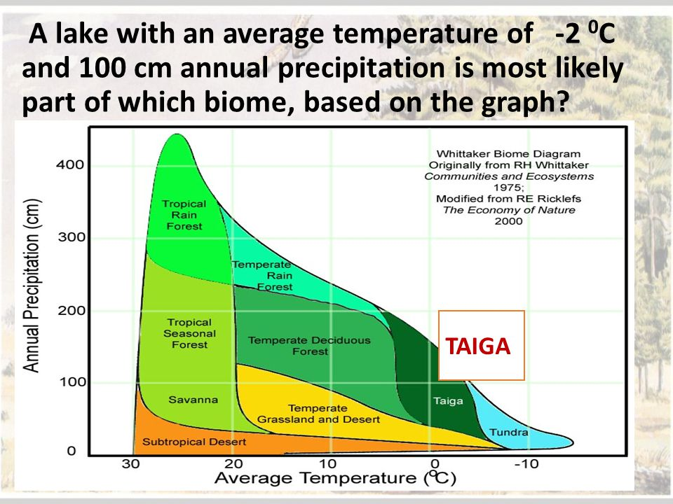 A lake with an average temperature of -2 0C and 100 cm annual precipitation is most likely part of which biome, based on the graph