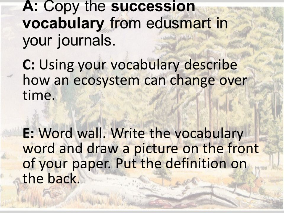 A: Copy the succession vocabulary from edusmart in your journals.