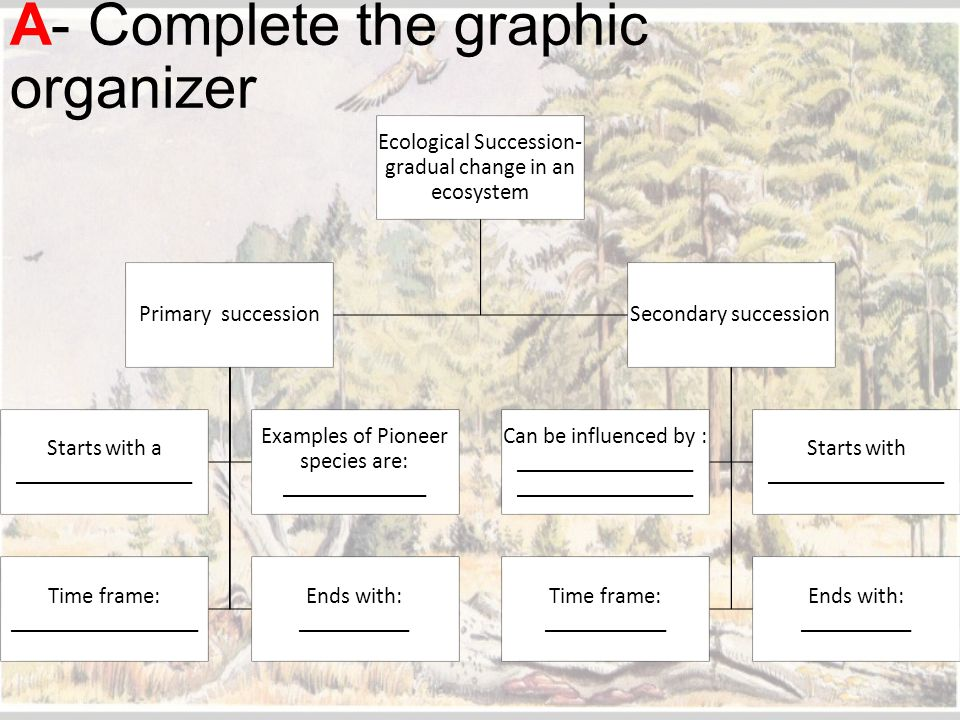 A- Complete the graphic organizer