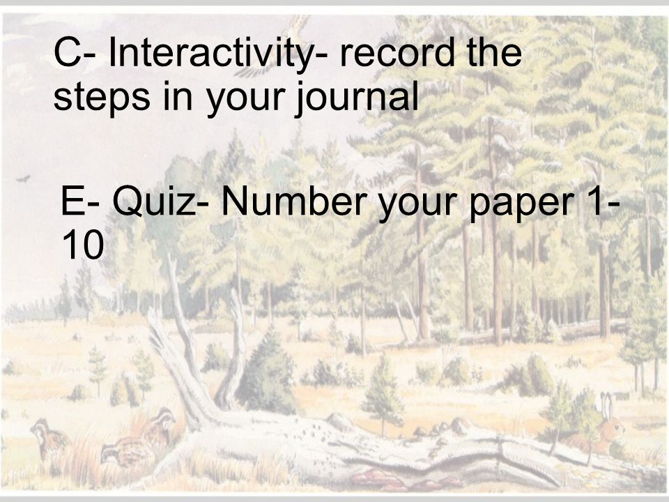 C- Interactivity- record the steps in your journal
