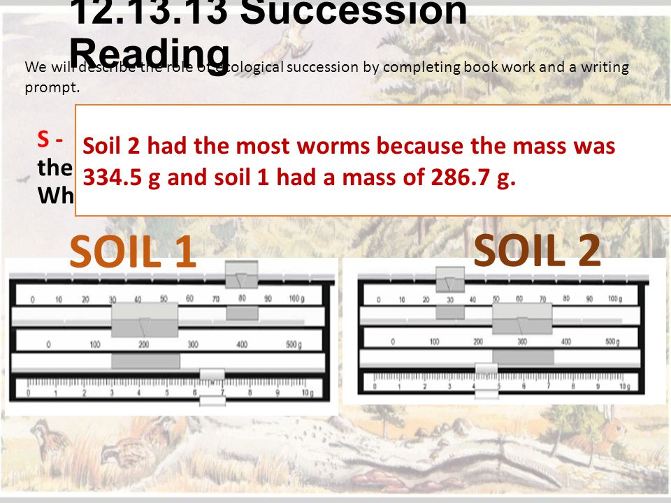 SOIL 1 SOIL 2 12.13.13 Succession Reading