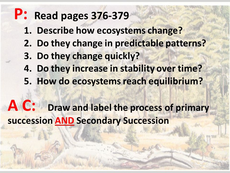P: Read pages 376-379 Describe how ecosystems change Do they change in predictable patterns Do they change quickly