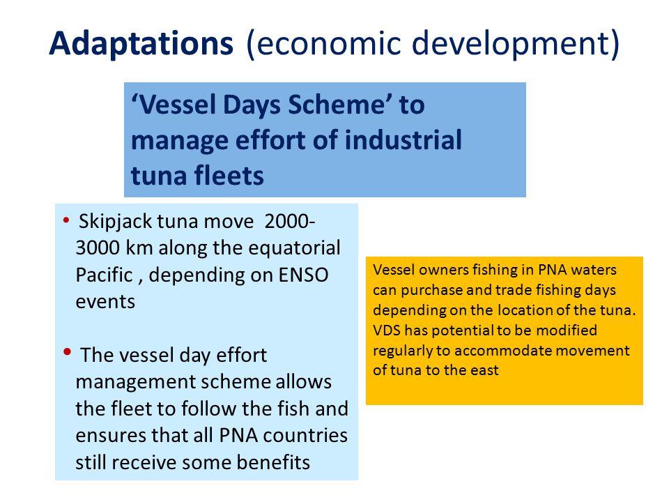 Adaptations (economic development)