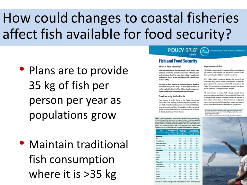 How could changes to coastal fisheries affect fish available for food security