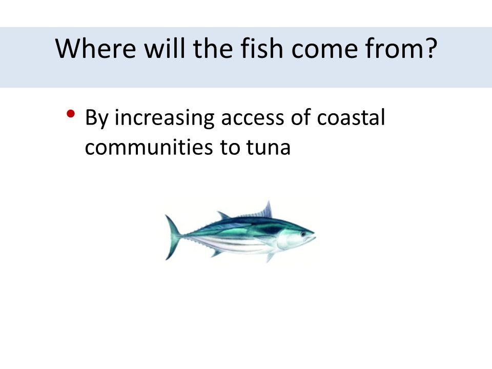 Where will the fish come from
