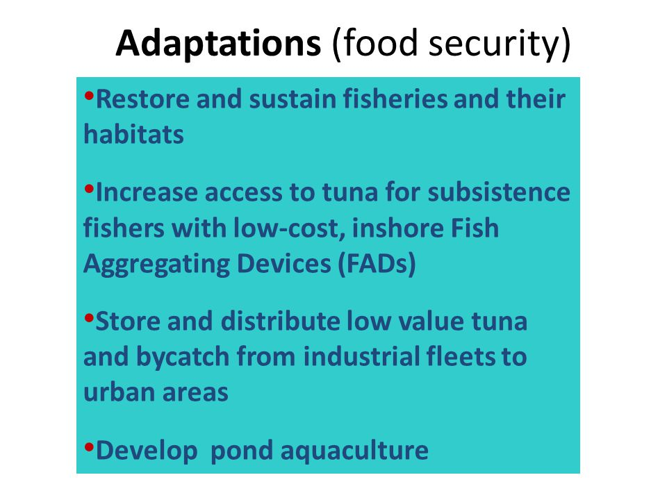 Adaptations (food security)