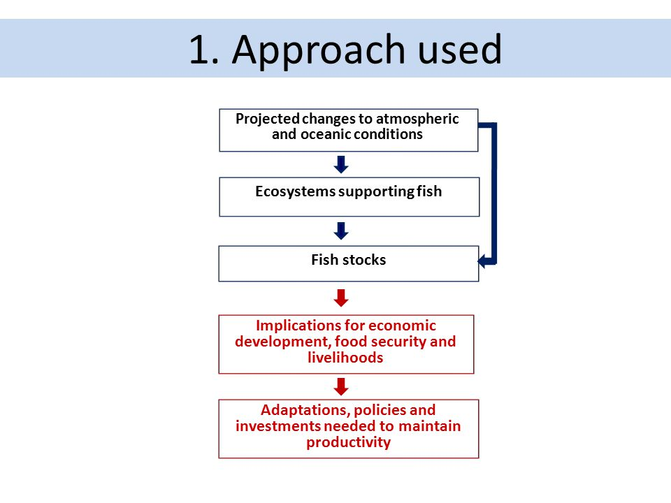 1. Approach used Ecosystems supporting fish Fish stocks