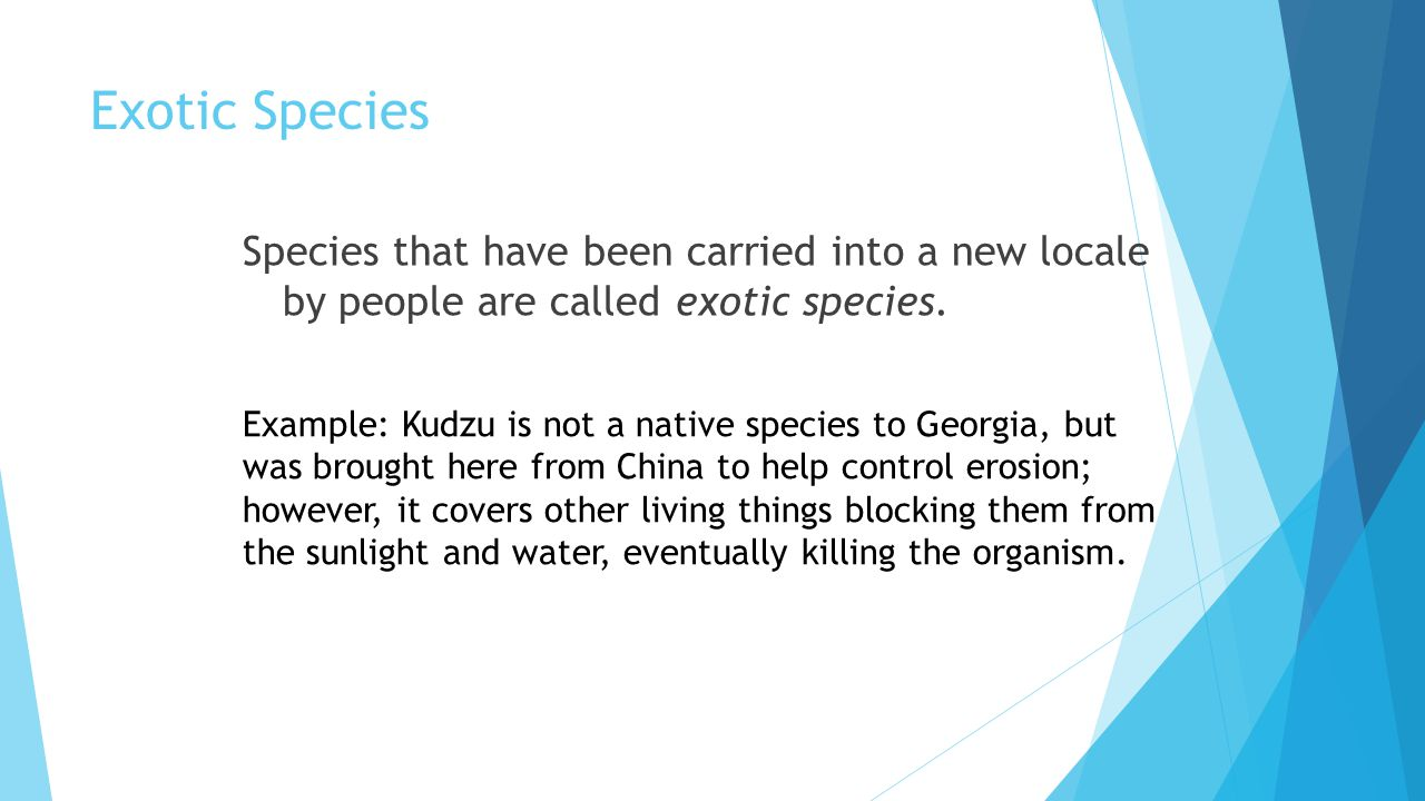 Exotic Species Species that have been carried into a new locale by people are called exotic species.