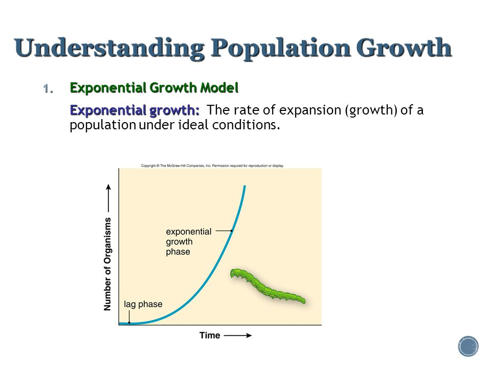 Understanding Population Growth