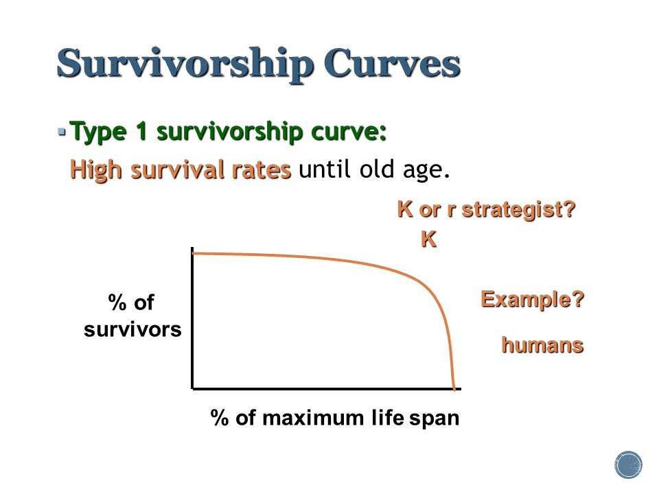Survivorship Curves Type 1 survivorship curve: