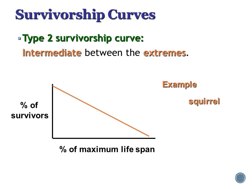 Survivorship Curves Type 2 survivorship curve: