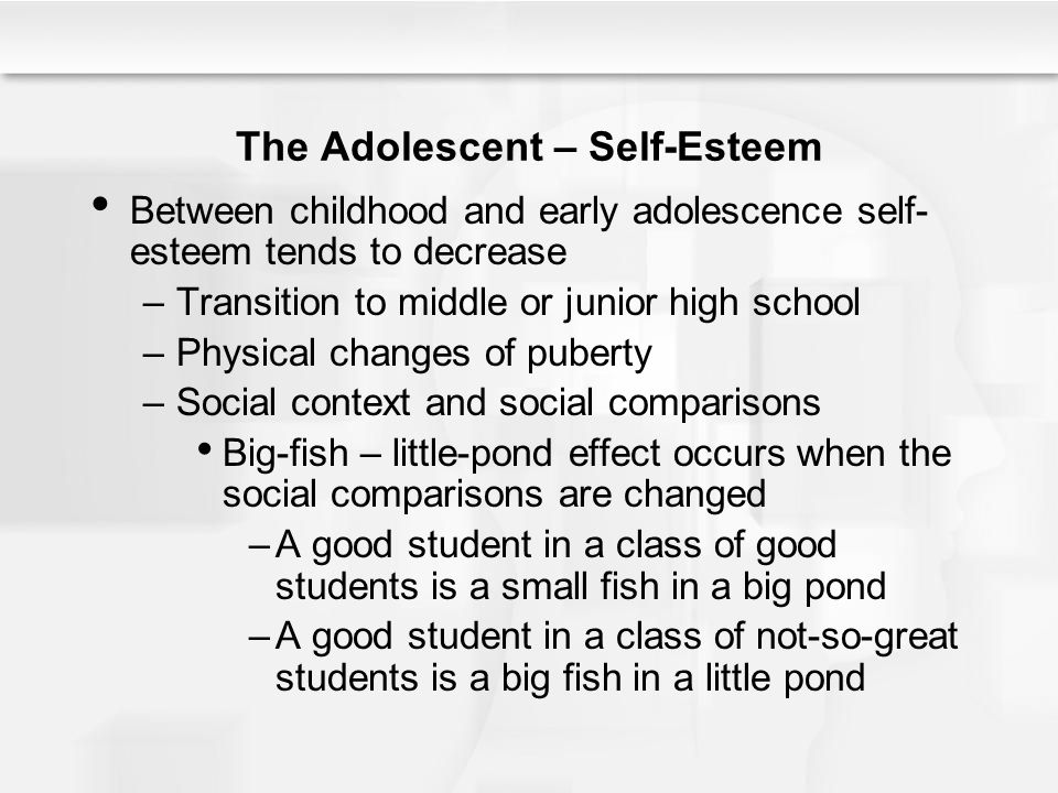 The Adolescent – Self-Esteem