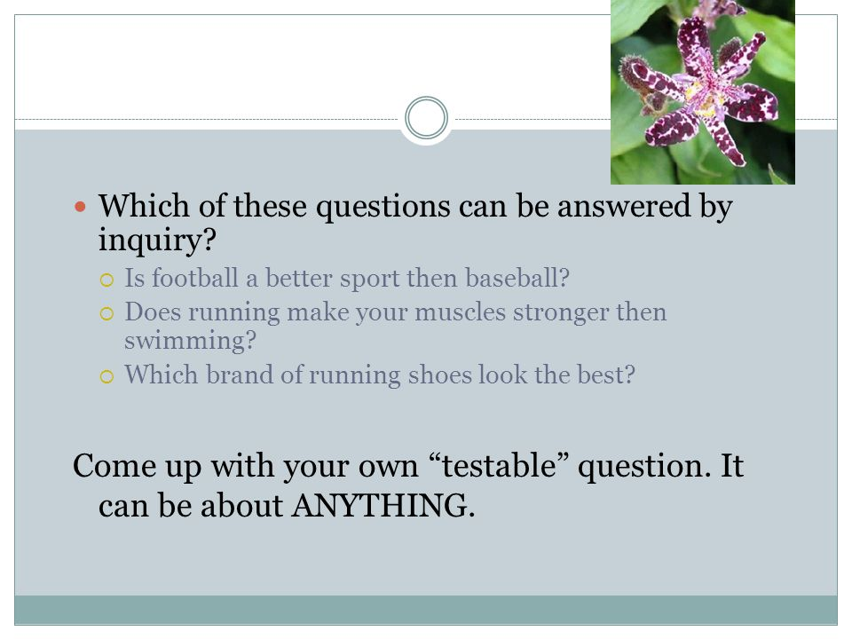 Come up with your own testable question. It can be about ANYTHING.
