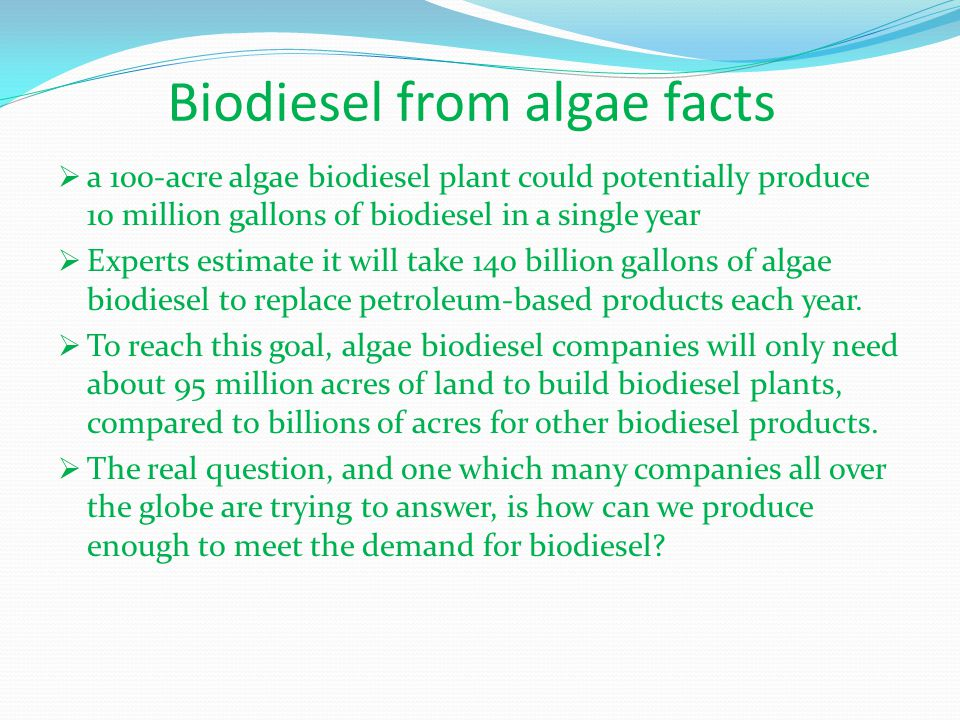 Biodiesel from algae facts