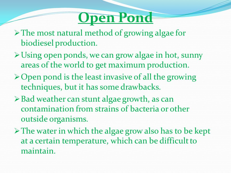 Open Pond The most natural method of growing algae for biodiesel production.