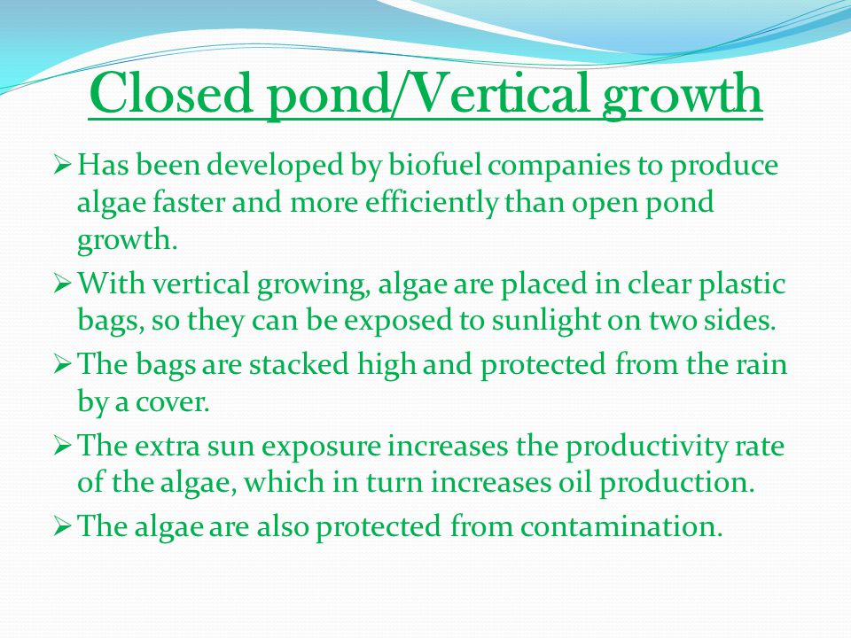 Closed pond/Vertical growth
