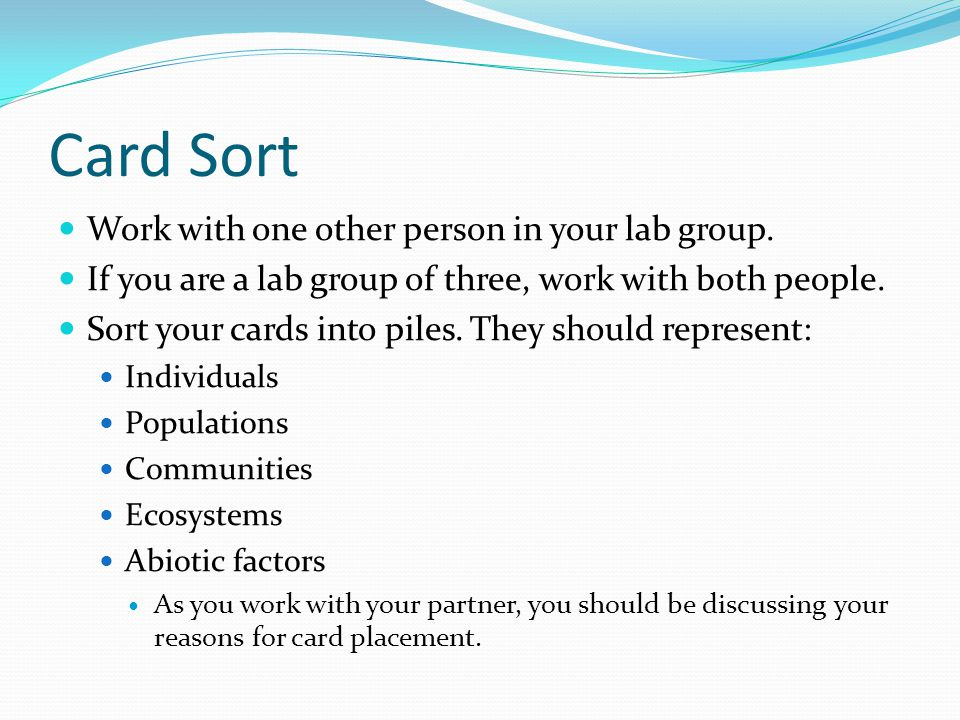 Card Sort Work with one other person in your lab group.