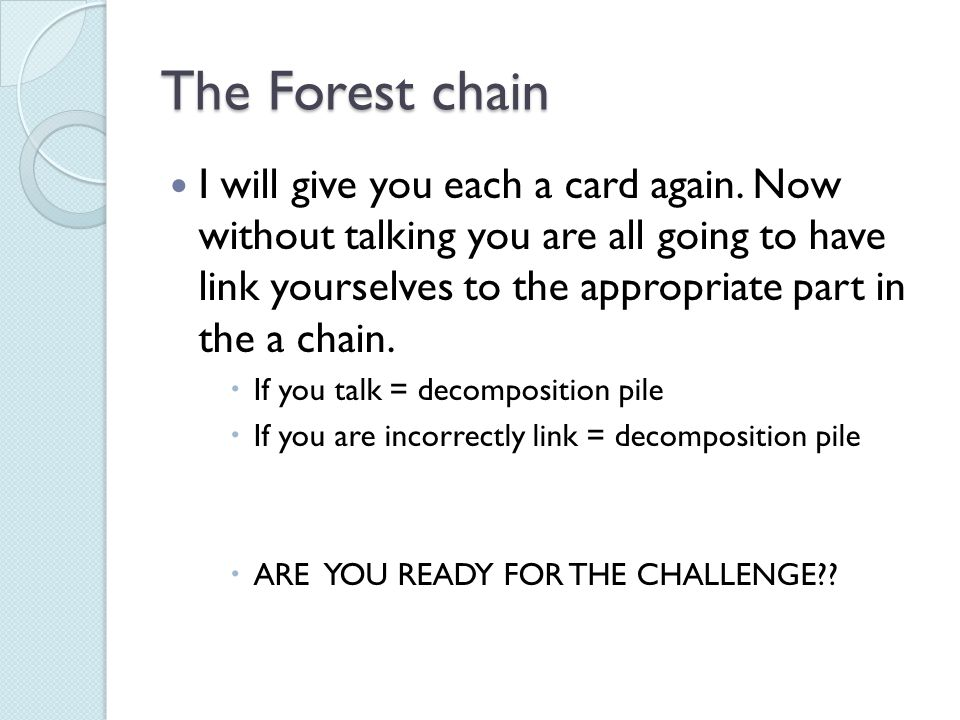 The Forest chain