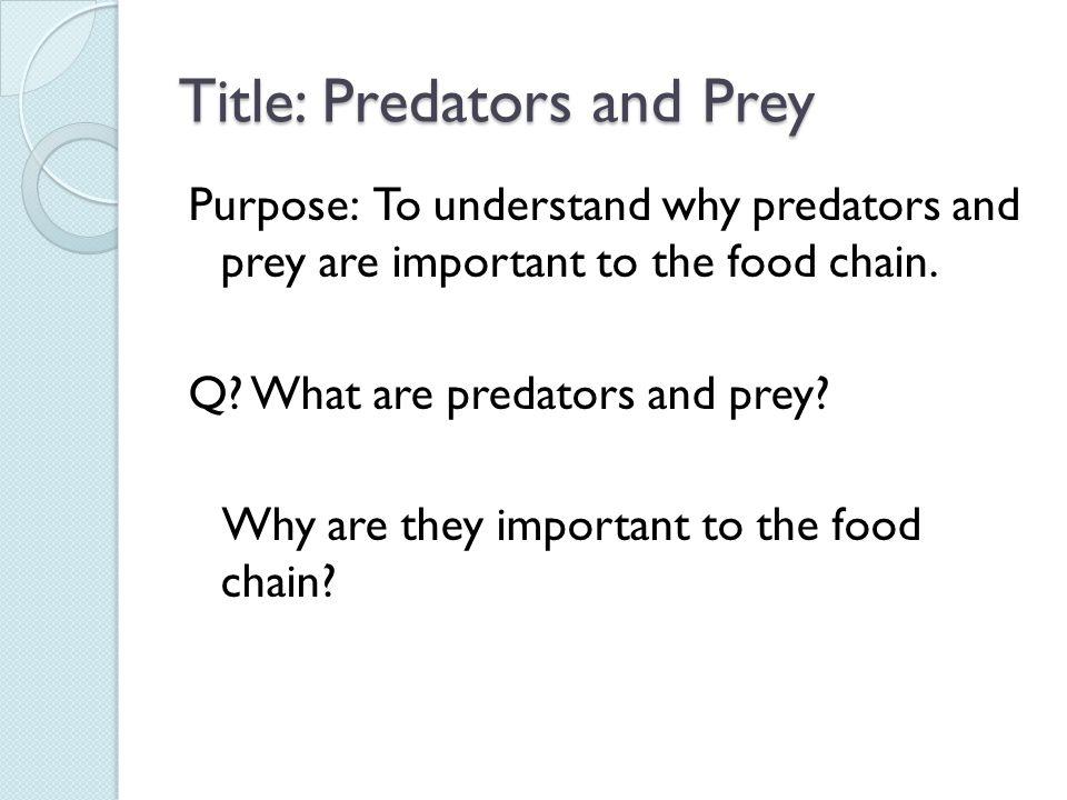 Title: Predators and Prey