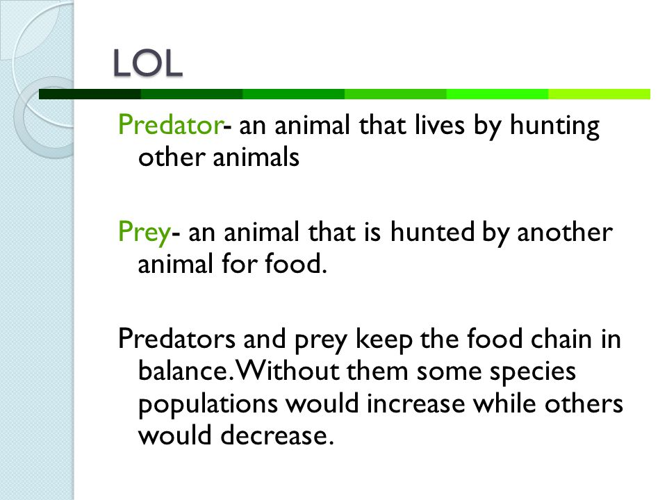 LOL Predator- an animal that lives by hunting other animals