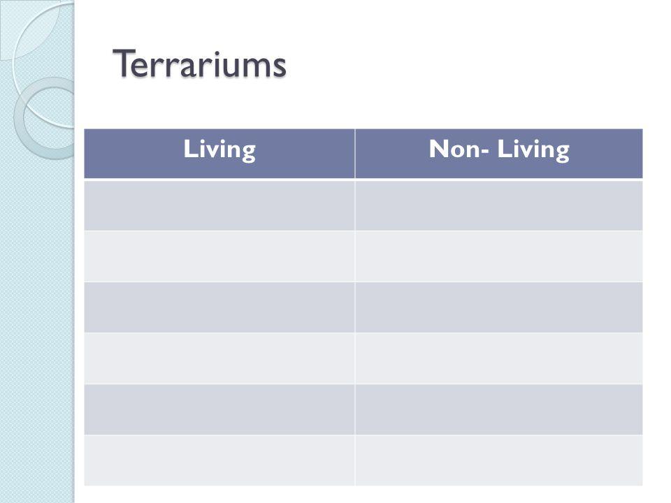 Terrariums Living Non- Living