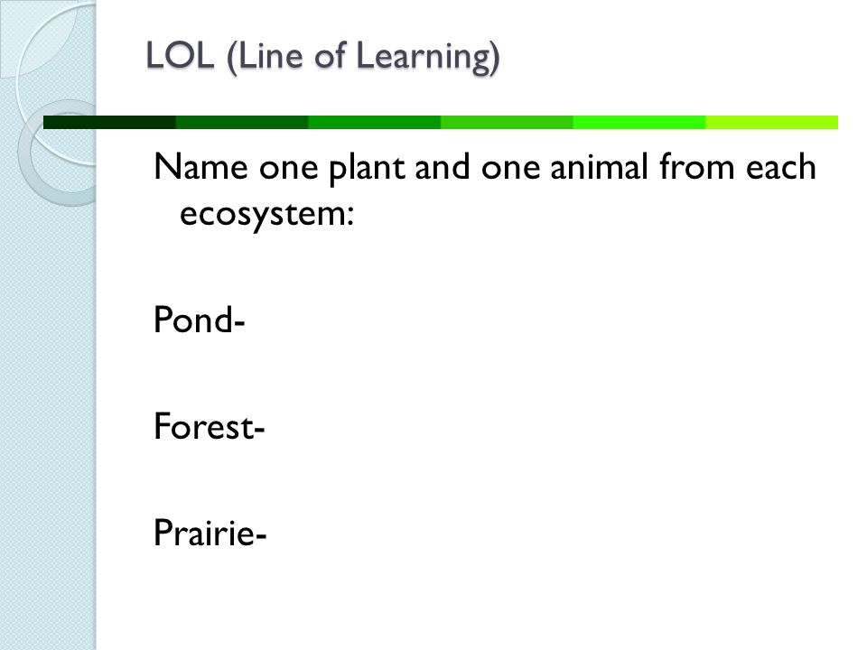 LOL (Line of Learning) Name one plant and one animal from each ecosystem: Pond- Forest- Prairie-