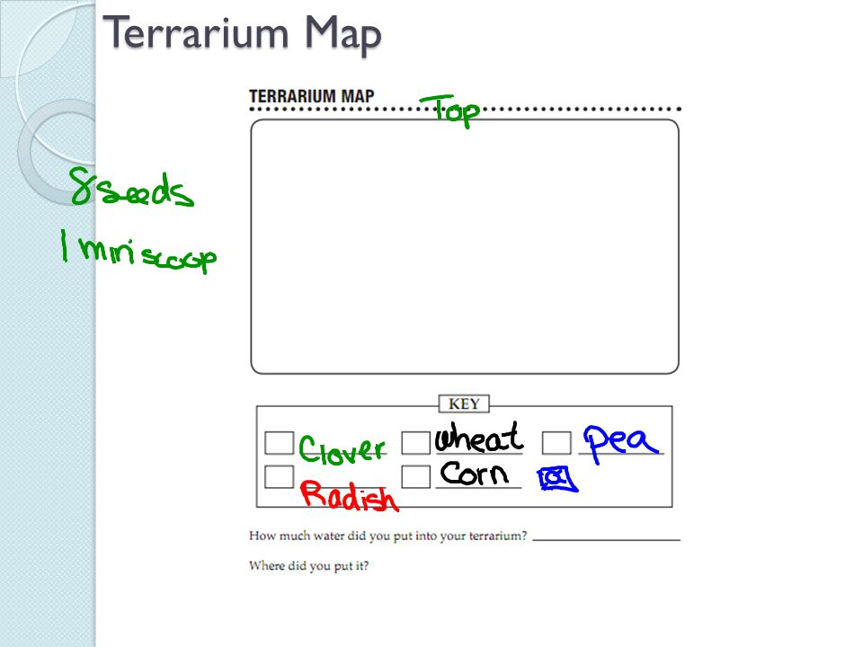 Terrarium Map