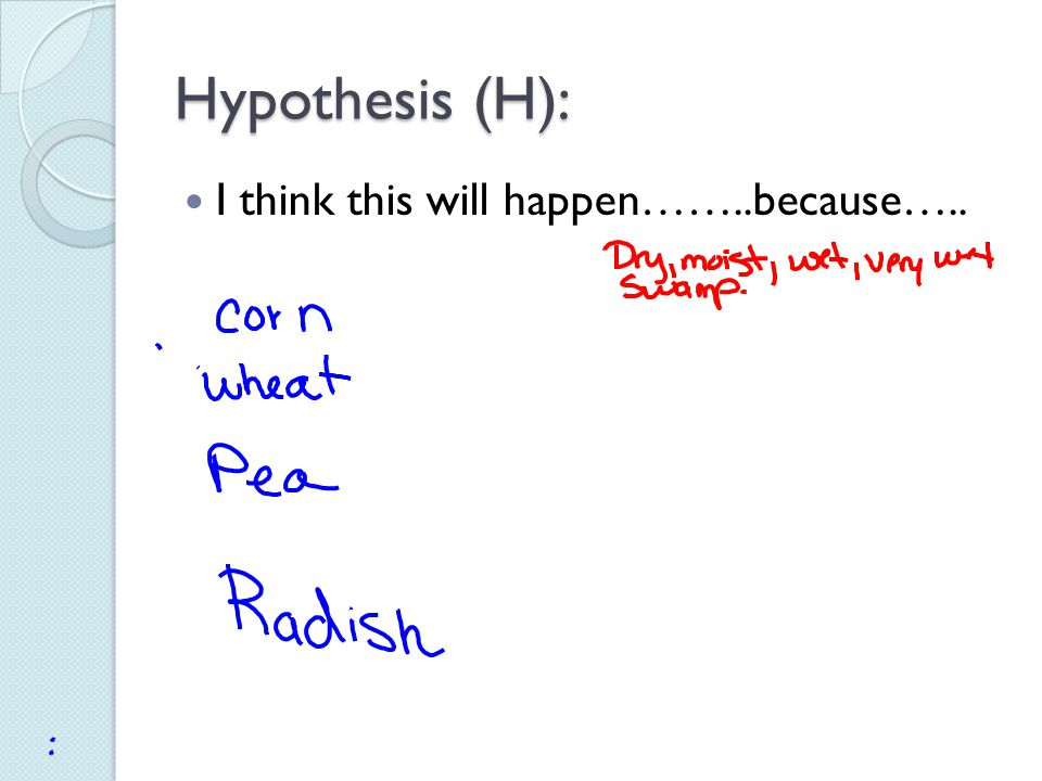 Hypothesis (H): I think this will happen……..because…..