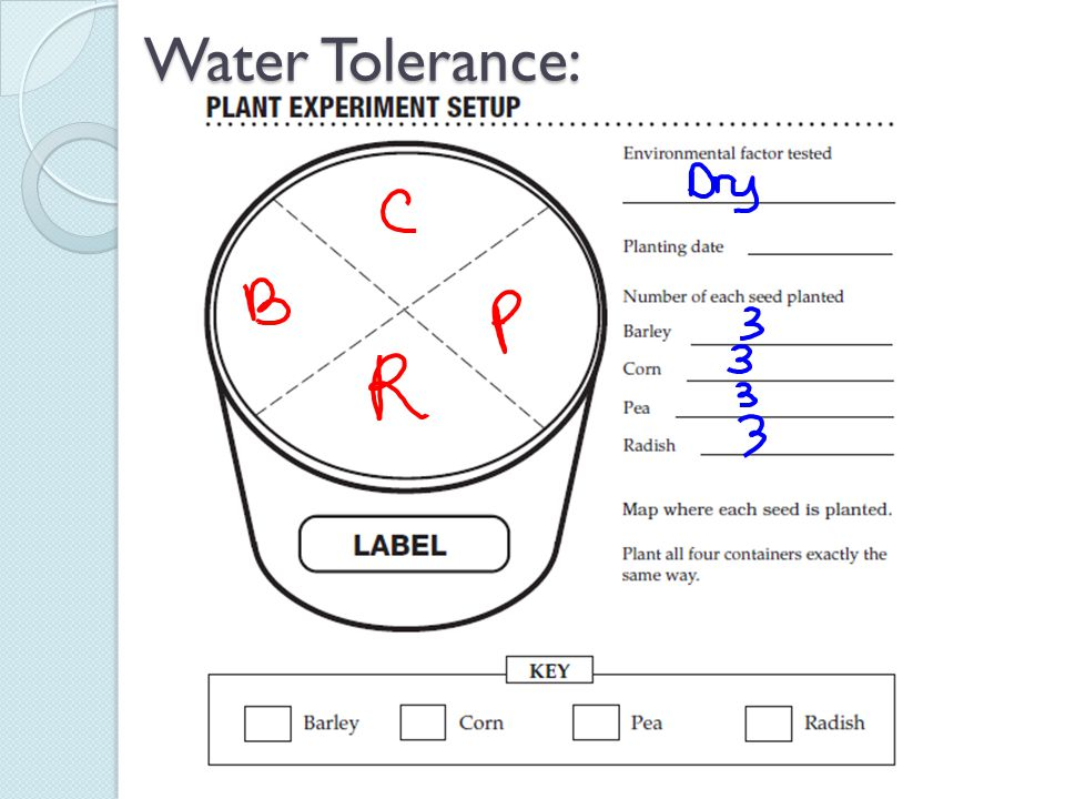 Water Tolerance: I would have each table fill out with me…all plant the seeds in the same area.