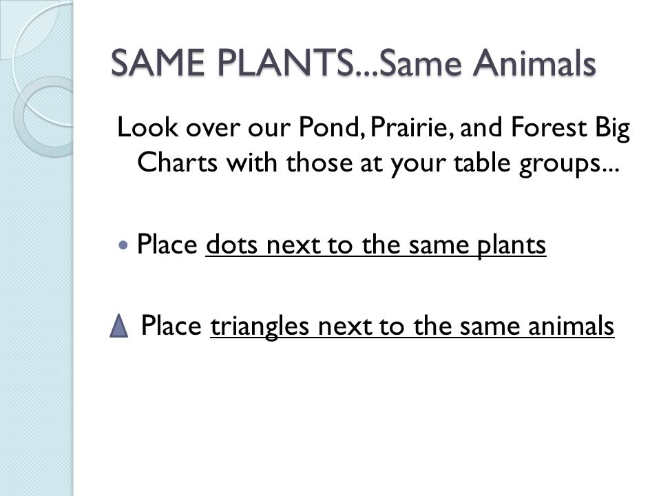 SAME PLANTS...Same Animals