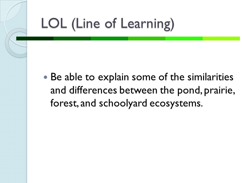 LOL (Line of Learning) Be able to explain some of the similarities and differences between the pond, prairie, forest, and schoolyard ecosystems.