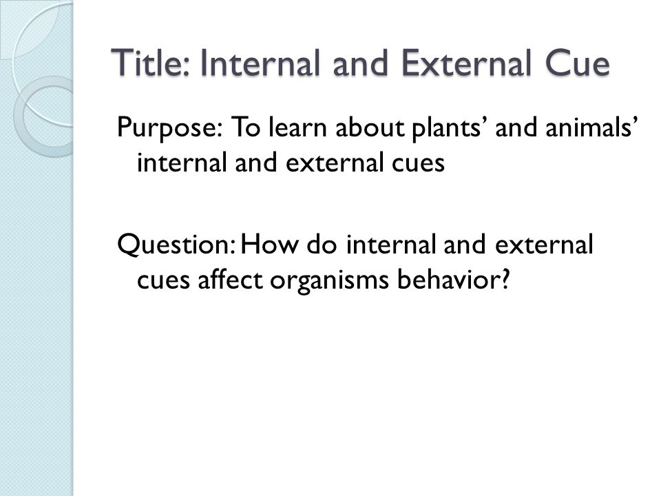 Title: Internal and External Cue