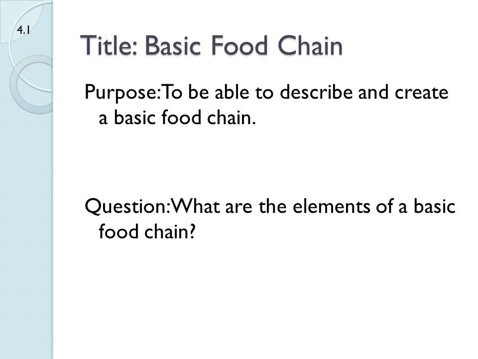 Title: Basic Food Chain
