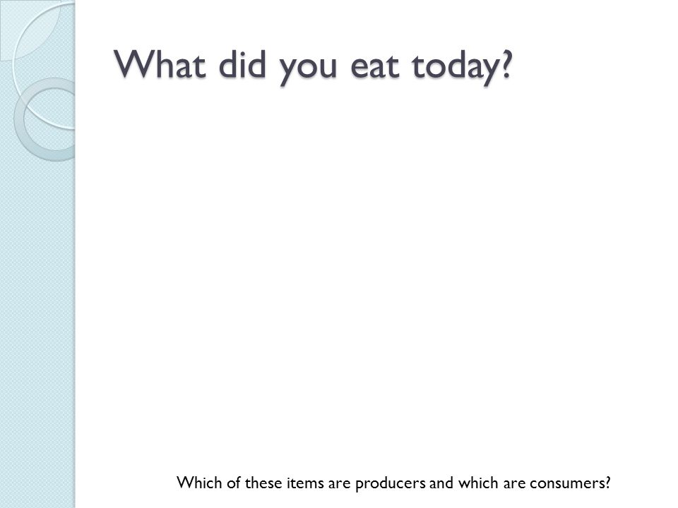 What did you eat today Which of these items are producers and which are consumers