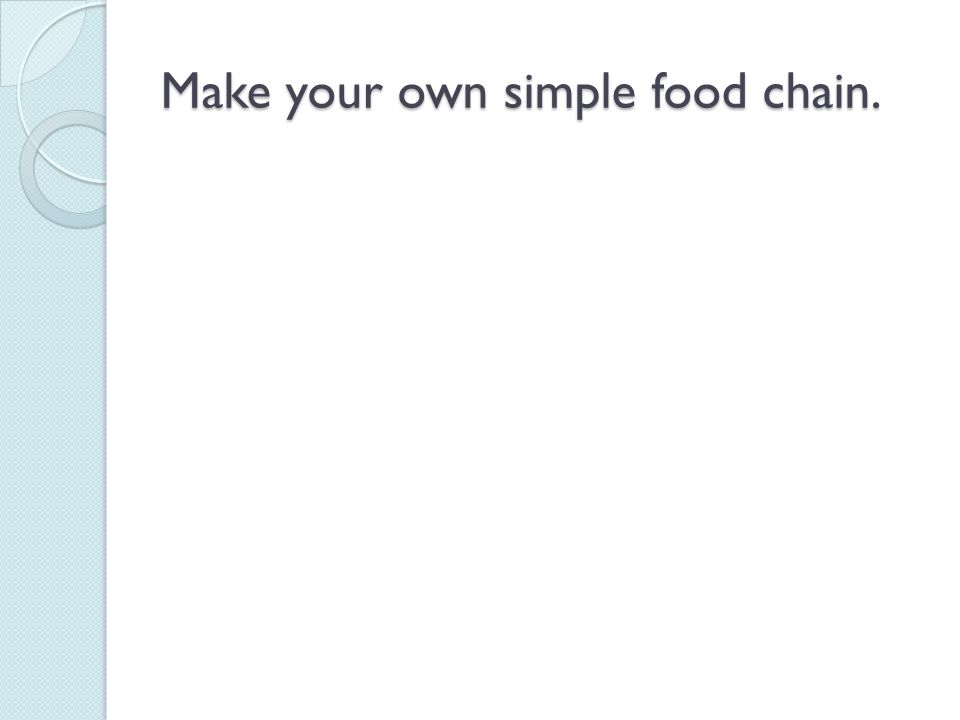 Make your own simple food chain.