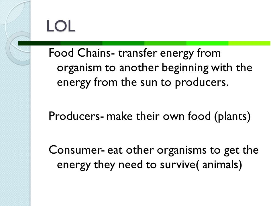 LOL Food Chains- transfer energy from organism to another beginning with the energy from the sun to producers.