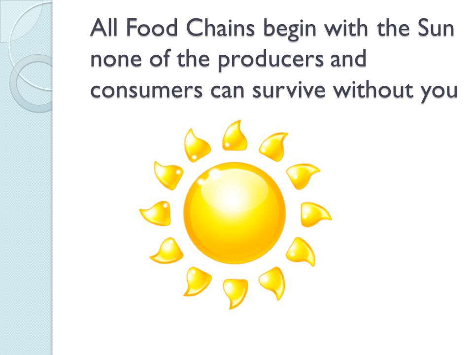 All Food Chains begin with the Sun none of the producers and consumers can survive without you