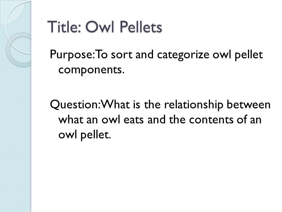Title: Owl Pellets
