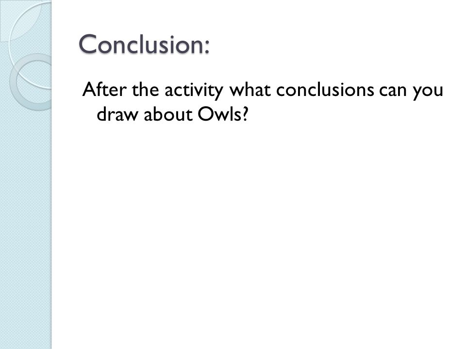 Conclusion: After the activity what conclusions can you draw about Owls