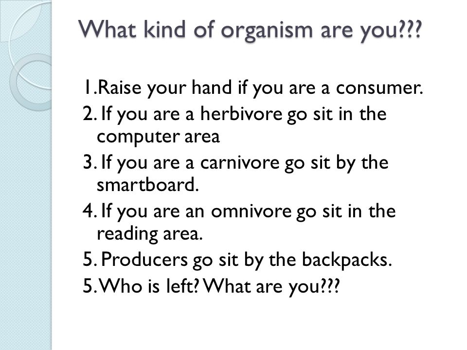 What kind of organism are you