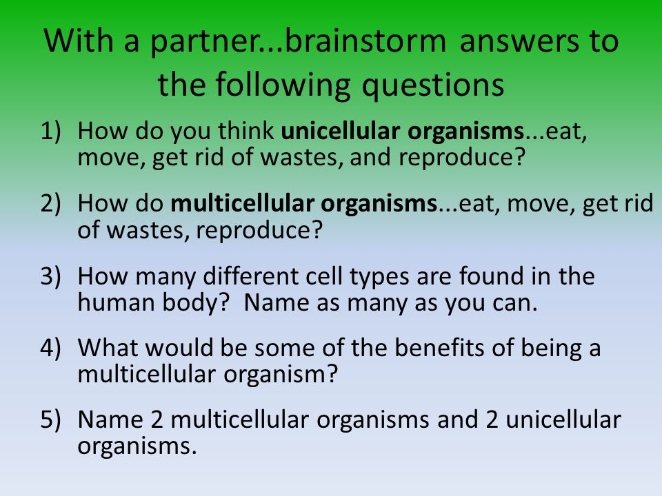 With a partner...brainstorm answers to the following questions