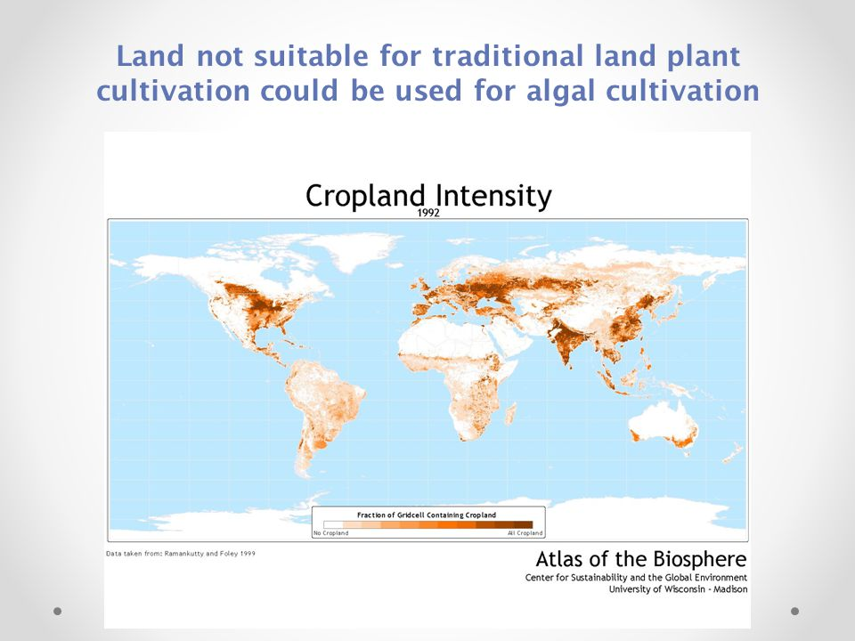 Land not suitable for traditional land plant cultivation could be used for algal cultivation