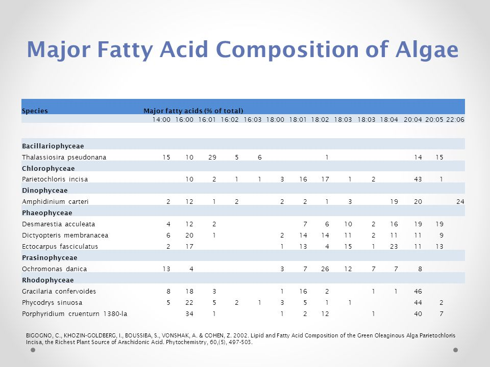 Major Fatty Acid Composition of Algae