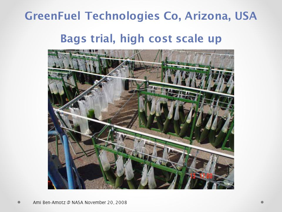 GreenFuel Technologies Co, Arizona, USA Bags trial, high cost scale up