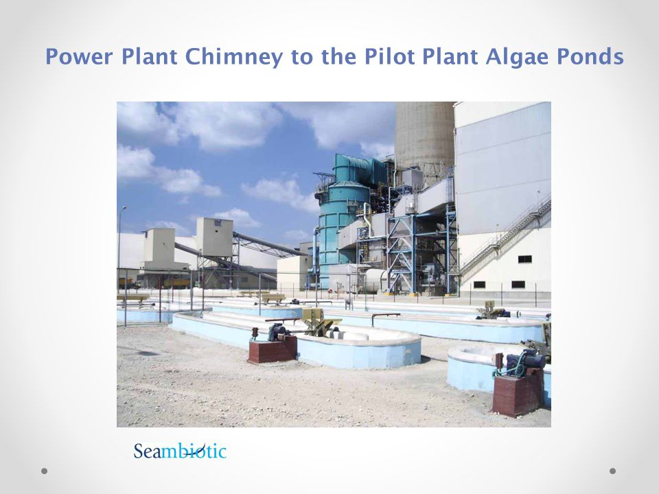Power Plant Chimney to the Pilot Plant Algae Ponds